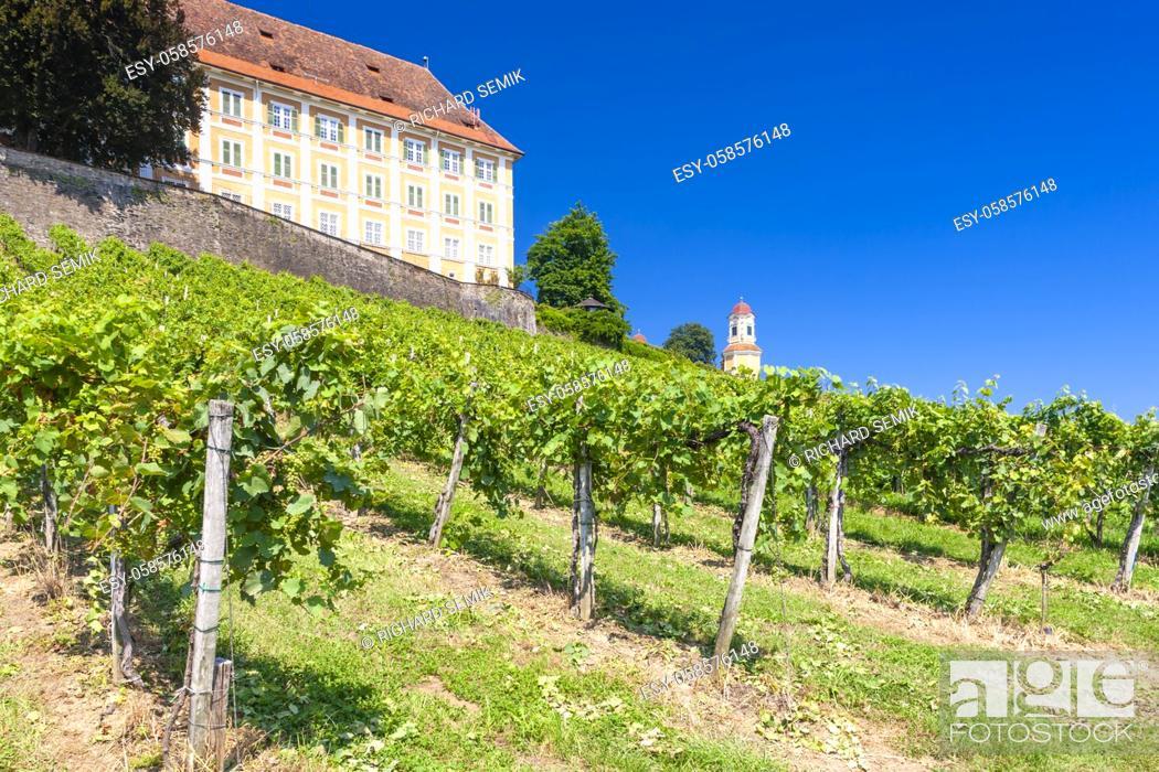 Imagen: Castle Stainz and vineyard, Styria, Austria.