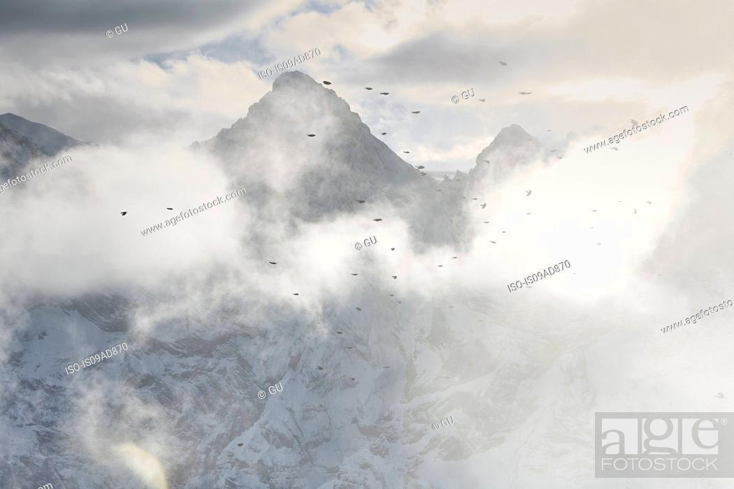 Stock Photo: Birds flying through clouds, Schilthorn, Murren, Bernese Oberland, Switzerland.