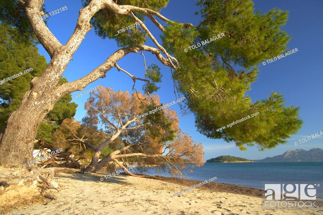 Stock Photo: Beach of Formentor Pollença Formentor Peninsula, Mallorca Spain Balearic Islands.