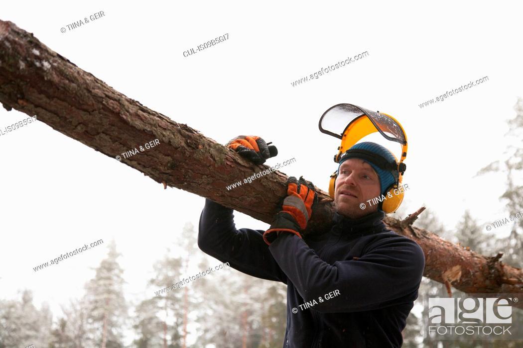 Imagen: Logger carrying log, Tammela, Forssa, Finland.