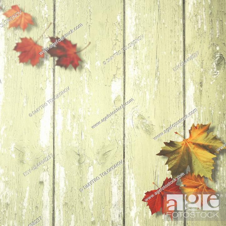 Stock Photo: Abstract autumnal backgrounds with maple leaves over old wooden desk.