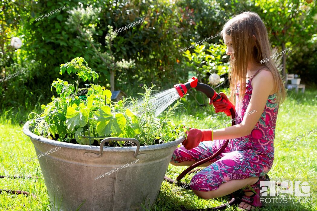 Stock Photo: Girl using garden hose for watering planted herbs in zinc tub in the garden.
