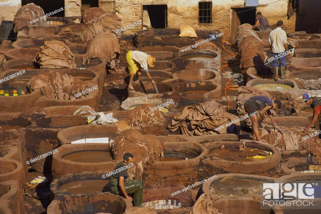 Stock Photo: Fes, Traditional Tanneries with Dyeing Tubs, The Chouwara, Chouara, Tannery, Old Town, Medina, UNESCO World Heritage Site, Fes el Bali, Maghreb, North Africa.