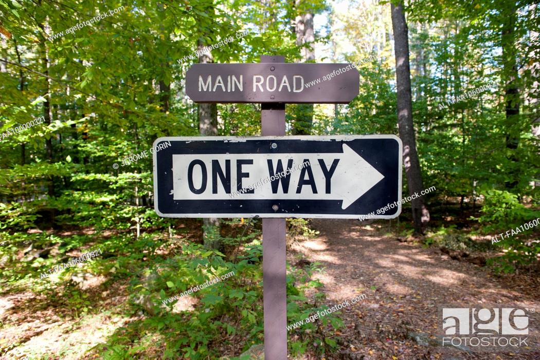 Stock Photo: One way sign in woods.