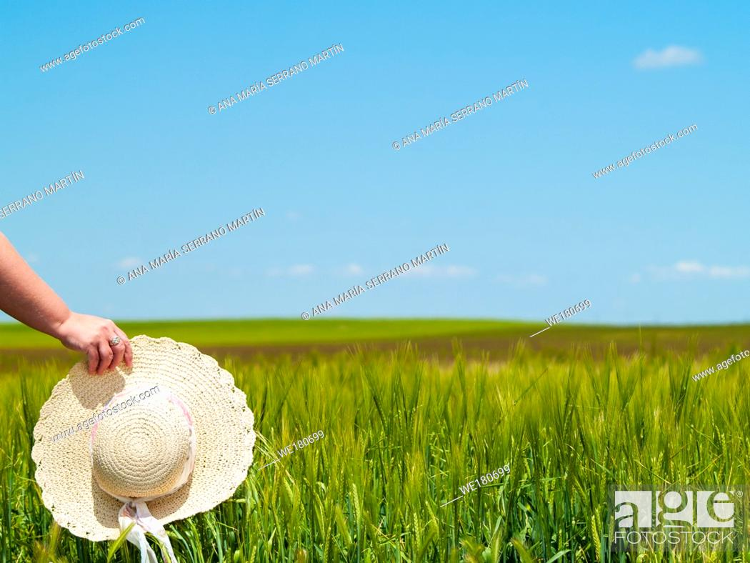 Imagen: Unrecognizable with a straw hat in his hand in a farm field in spring barley person.