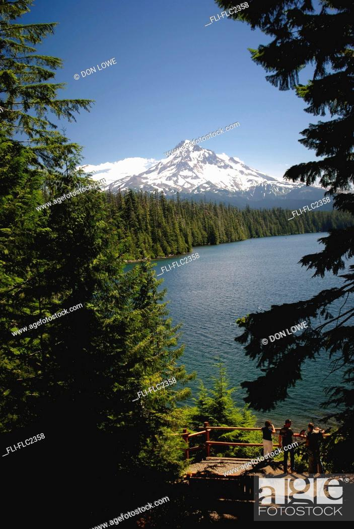 Lost Lake Mount Hood National Forest Oregon Usa Stock