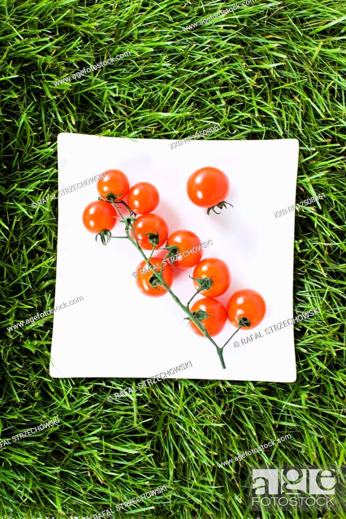 Stock Photo: tomatoes on grass.