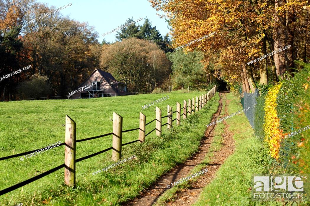 Stock Photo: Meadow path with wooden fence in autumn, in the background farmhouse, Worpswede, Lower Saxony, Germany, Europe.