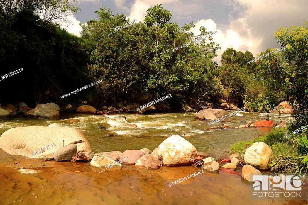 Imagen: Chinchina River, Chinchina, Caldas, Manizales, Colombia.