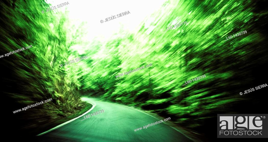 Stock Photo: Road in Irate forest, Navarre, Spain.