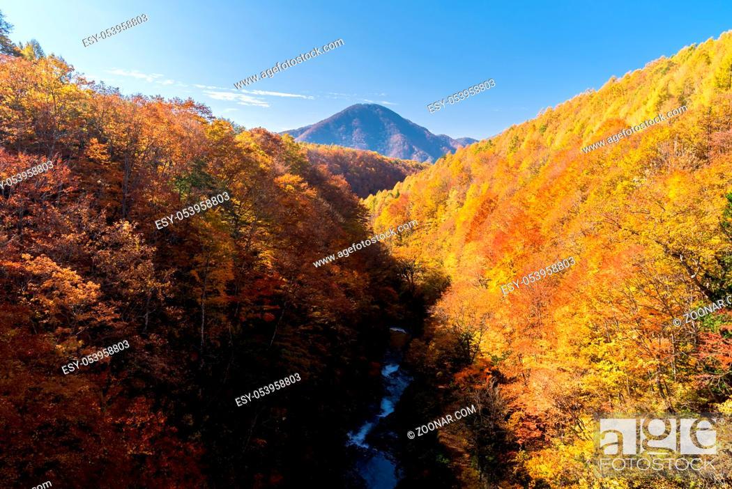 Stock Photo: Nakatsugawa gorge from bridge at Fukushima in autumn fall Japan.