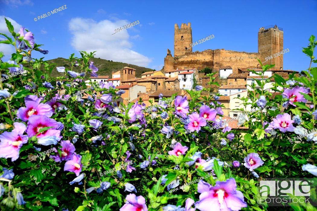 Imagen: Castle of Vozmediano, Soria, Spain.
