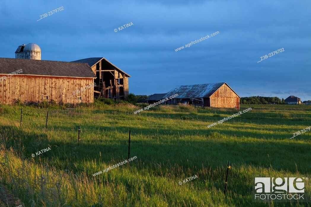 Imagen: A weathered barn in sunset light in the countryside of Mount Pleasant, Michigan, USA.