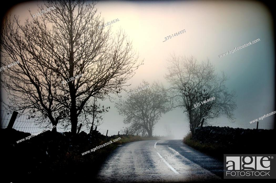 Stock Photo: Country road.