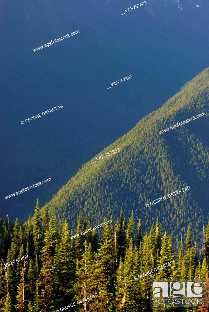 Stock Photo: Wolf River drainage from Blue Mountain, Olympic National Park, Washington, USA.