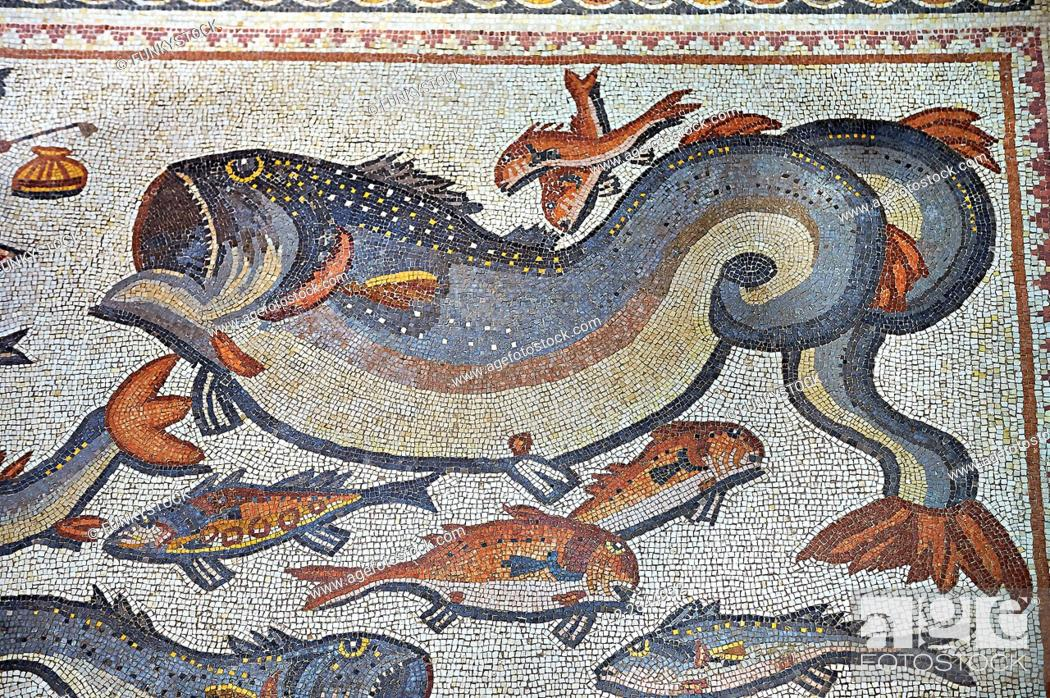 Stock Photo: Fish and marine life from the 3rd century Roman mosaic villa floor from Lod, near Tel Aviv, Israel. The Roman floor mosaic of Lod is the largest and best.