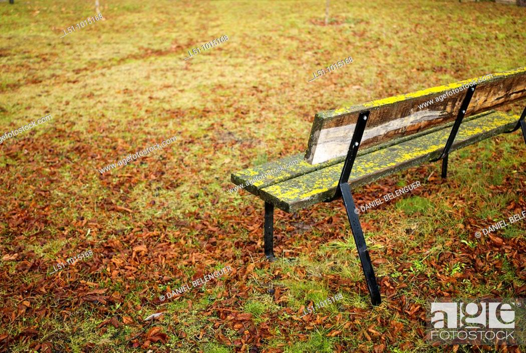 Stock Photo: Bench on a park in Pradillo, Sierra de Cameros, La Rioja.