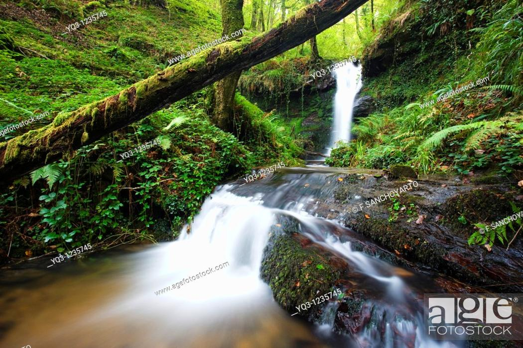 Stock Photo: Brook, Callejamala. Otañes, Castro Urdiales, Cantabria, Spain.