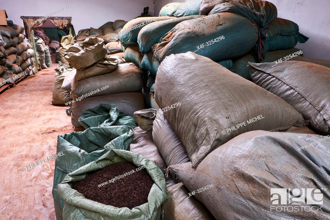 Stock Photo: China, Yunnan, Xishuangbanna district, Pu'er tea, Pu'er tea factory, one of the best chinese tea.