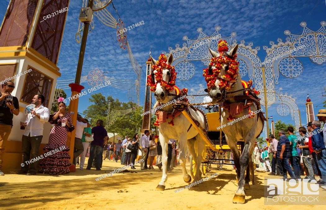 Photo de stock: Decorated horses at the Feria del Caballo (Horse Fair) in Jerez de la Frontera. Cádiz province, Andalusia, Spain.