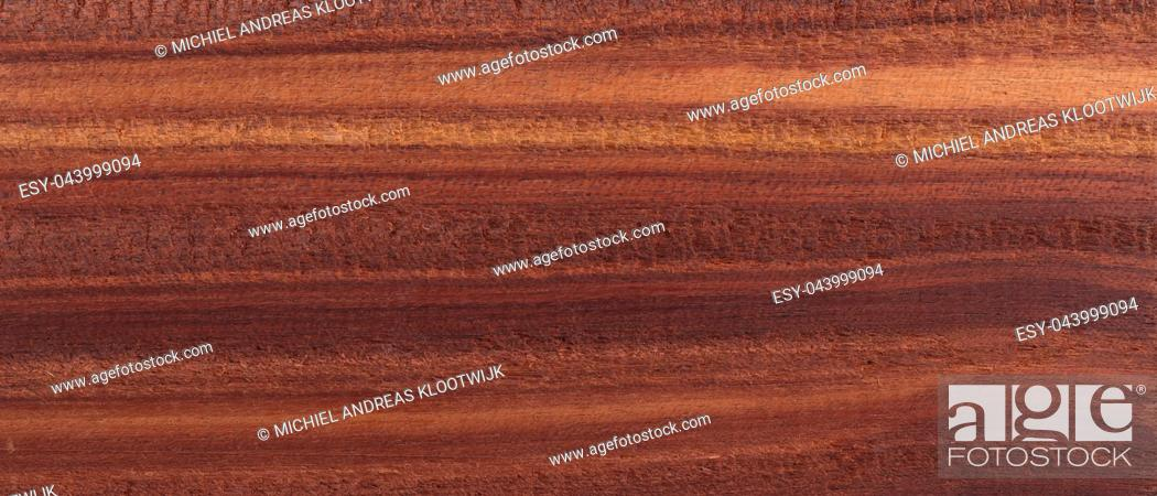 Stock Photo: Wood background - Wood from the tropical rainforest - Suriname - Brosimum paraense.