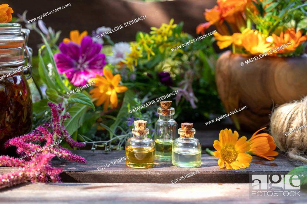 Stock Photo: Bottles of essential oil with fresh calendula and other medicinal herbs and flowers.