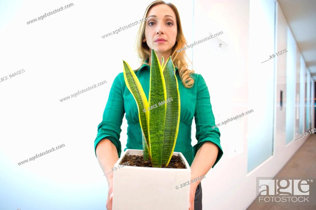 Stock Photo: Businesswoman with potted plant, portrait.
