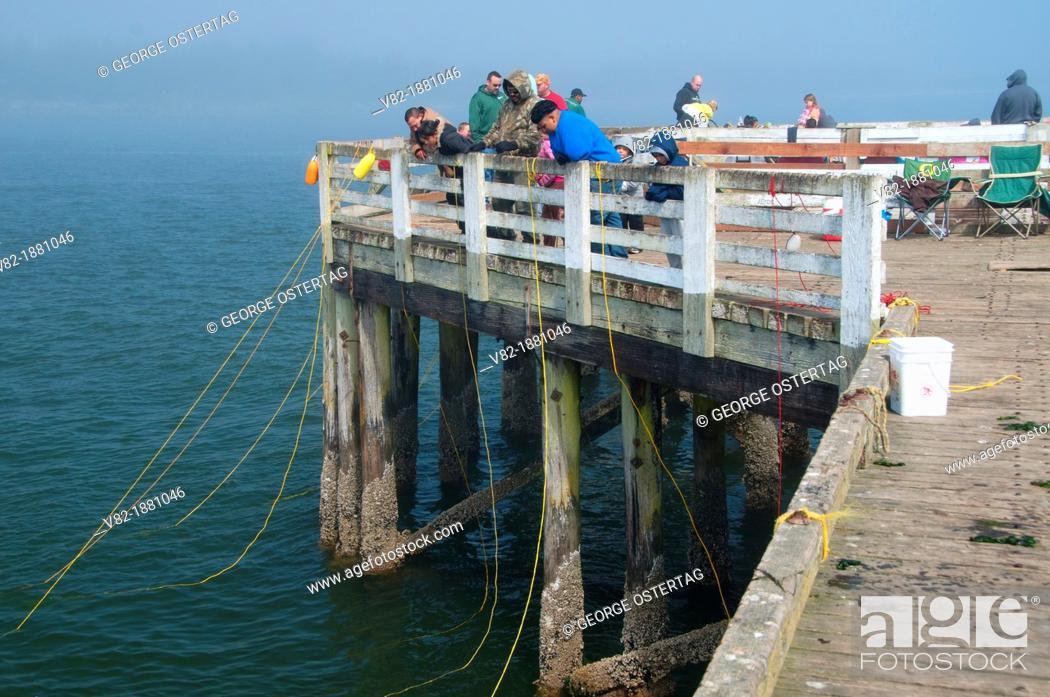 Stock Photo: Fishing pier, Windy Cove County Park, Oregon.