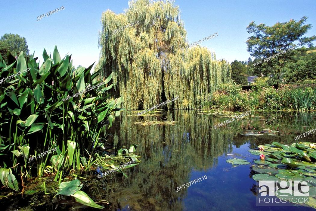Imagen: VIEW OF THE POND IN CLAUDE MONET'S GARDEN, GIVERNY, EURE 27, NORMANDY, FRANCE.