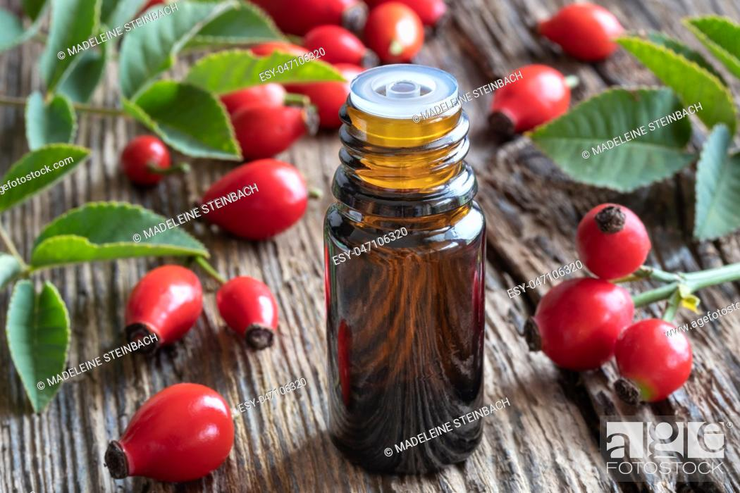 Stock Photo: A bottle of rosehip seed oil with fresh berries.