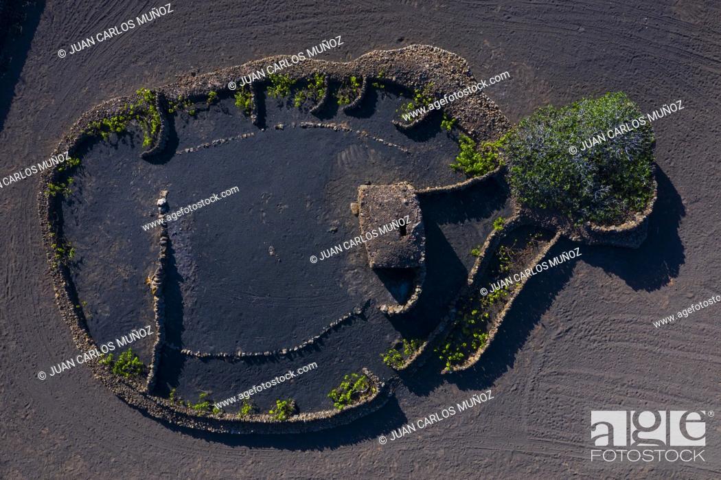 Stock Photo: Rural landscape, Tinajo, Lanzarote Island, Unesco Biosphere Reserve, Canary Islands, Spain, Europe.
