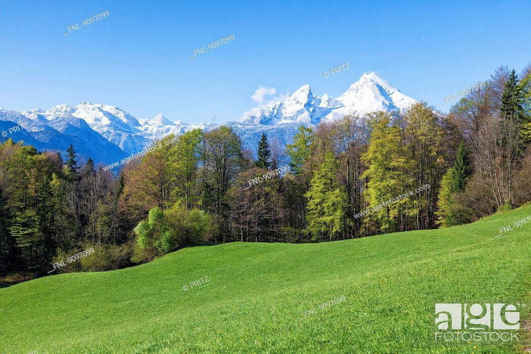 Stock Photo: Spring above Berchtesgaden with Watzmann, Bavaria, Germany.