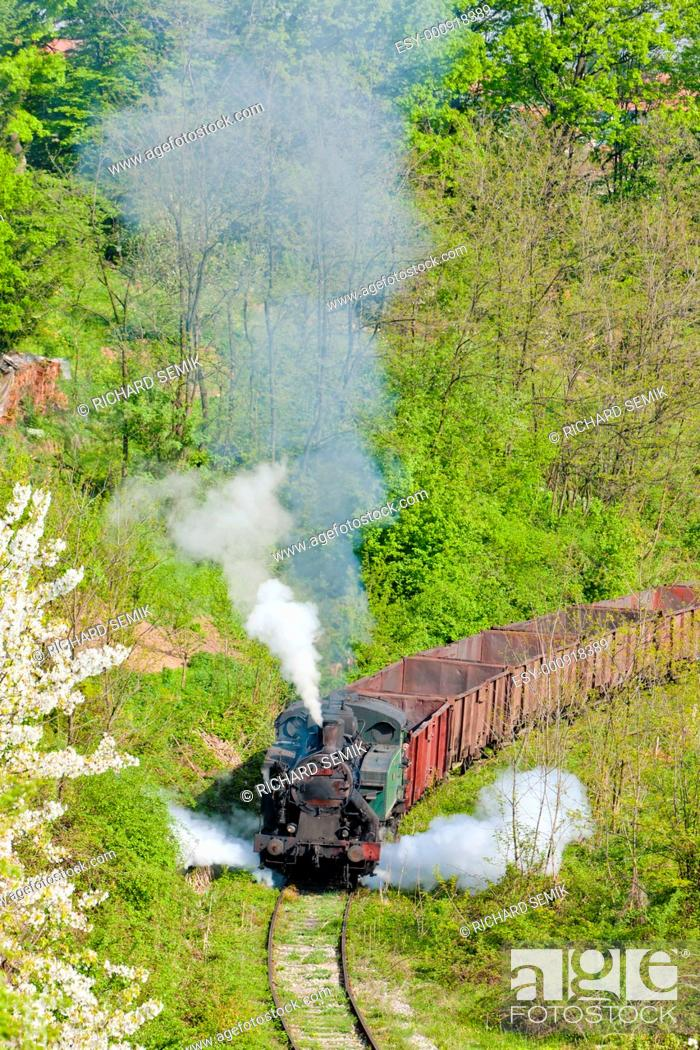 Stock Photo: steam freight train, Durdevik, Bosnia and Hercegovina.