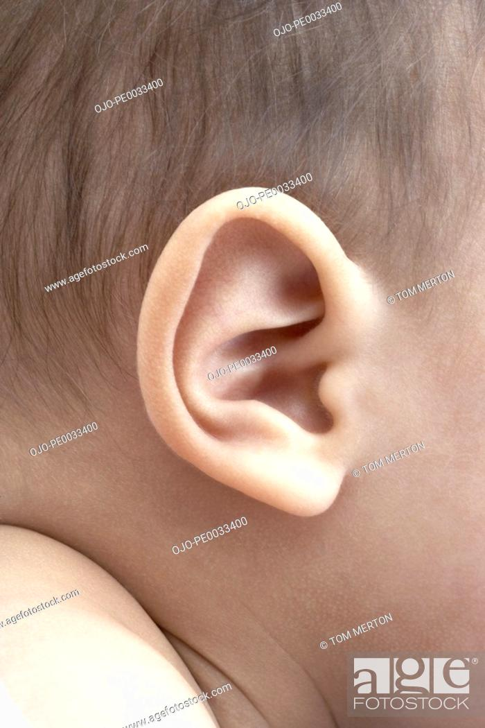Stock Photo: A baby's ear.