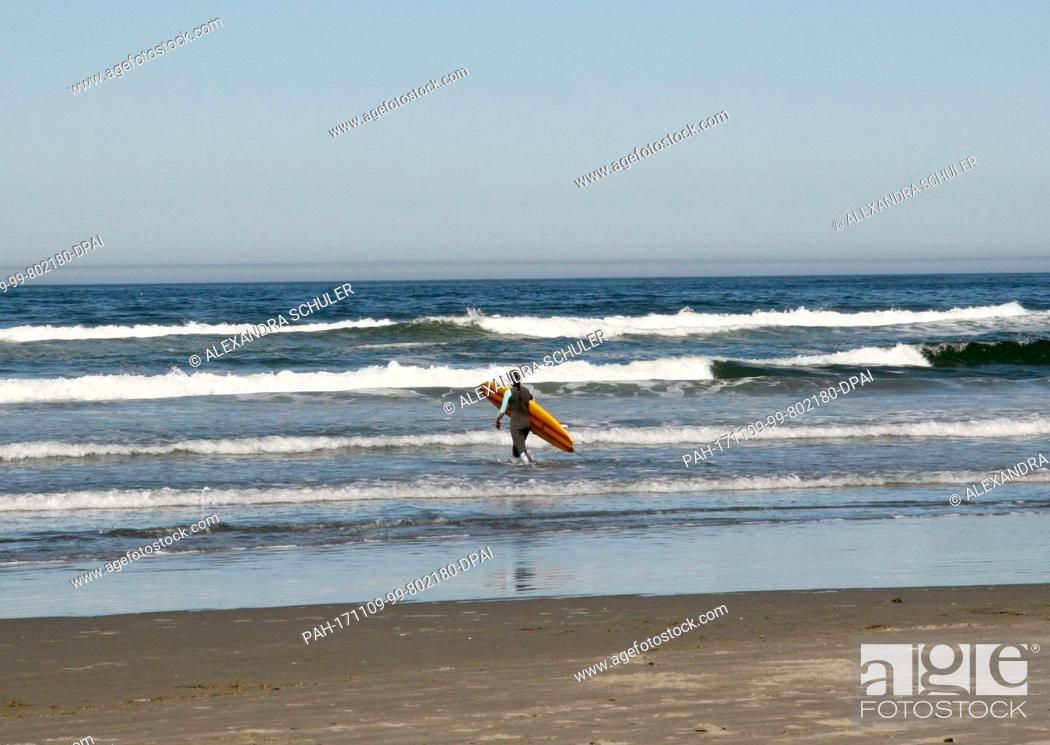 Stock Photo: A surfer carries his board as he steps into sea on Cannon Beach, US, 2 September 2017. Cannon Beach is a small town in Clatsop County, Oregon.