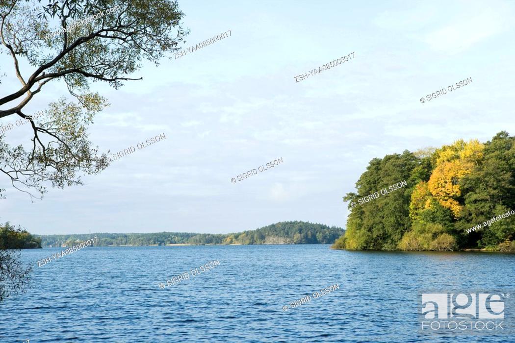 Stock Photo: Lake scene.