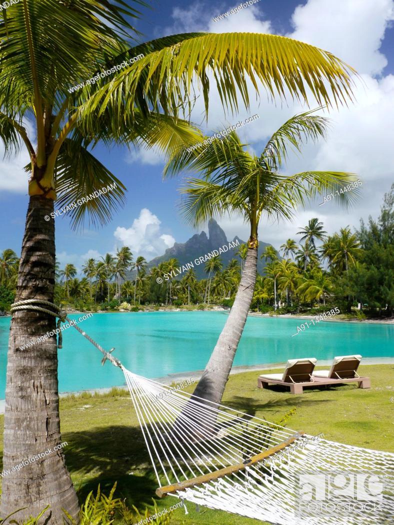 Stock Photo: French Polynesia, Windward islands archipelago, bora bora island, Saint Regis luxury hotel and resort , hammock.