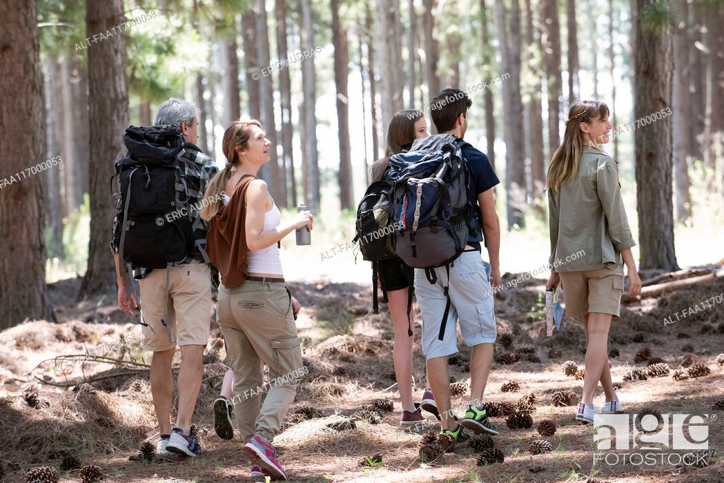 Stock Photo: Family hiking in forest.