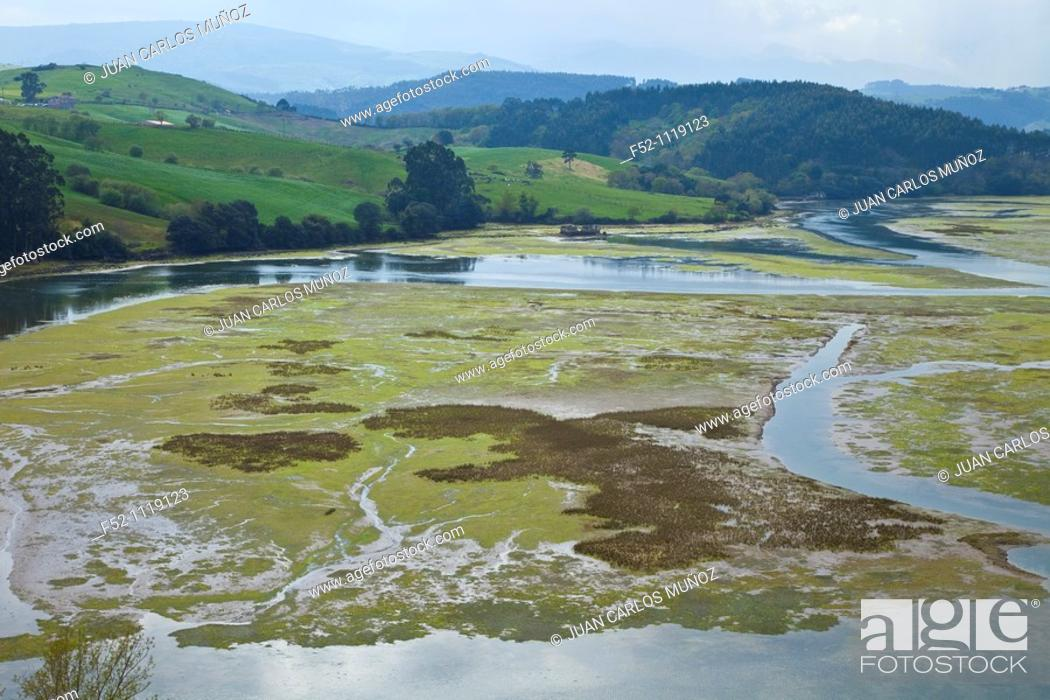 Stock Photo: Pombo marsh, San Vicente de la Barquera, Cantabria, Spain.