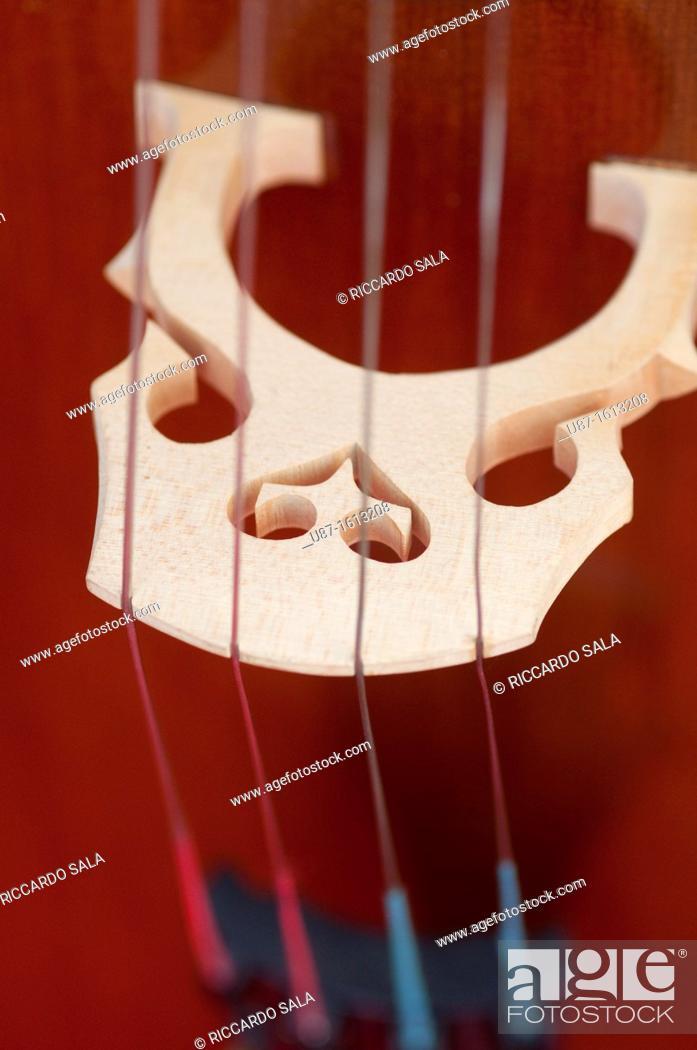 Stock Photo: Italy, Lombardy, Cremona, Violin Maker Worshop, Close up Violin.