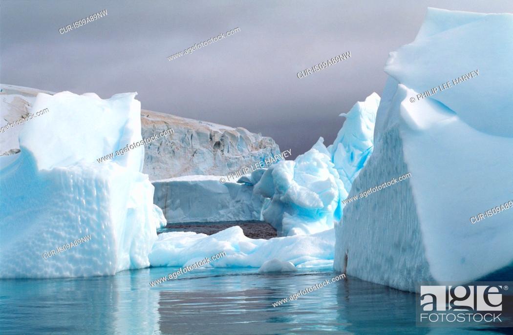 Imagen: Icebergs at the Antarctic Peninsula, Antarctica.