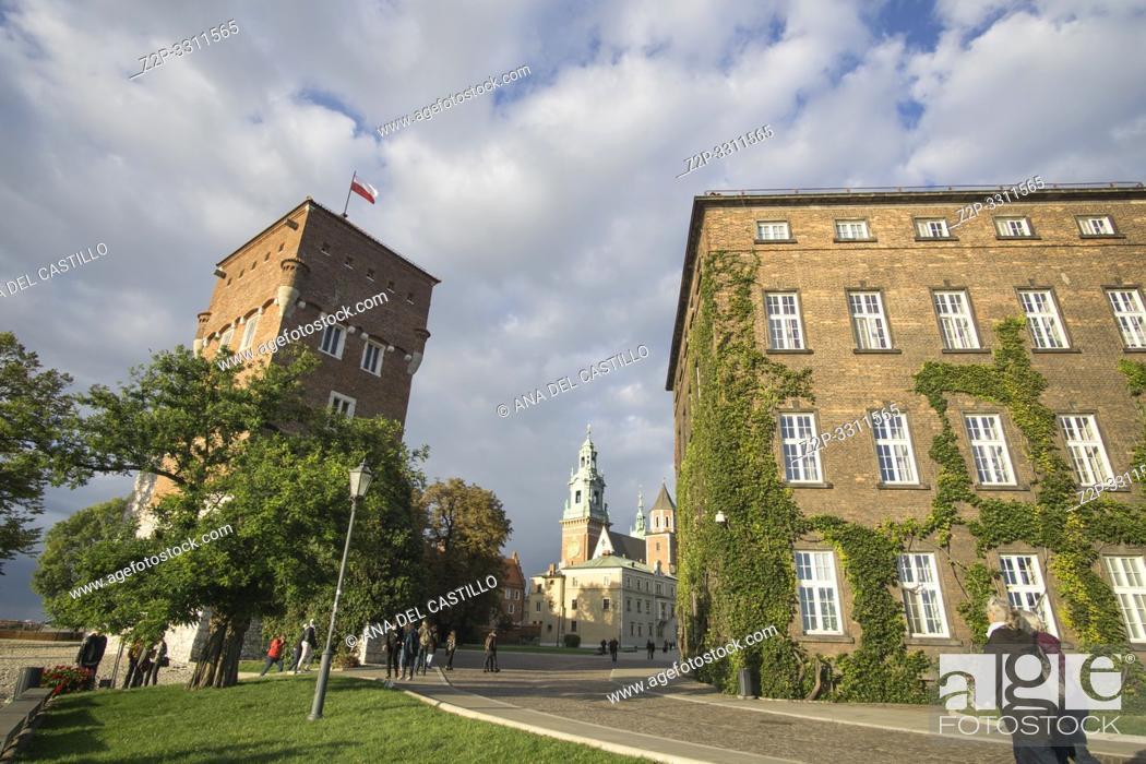 Stock Photo: Wawel castle in Krakow Poland.