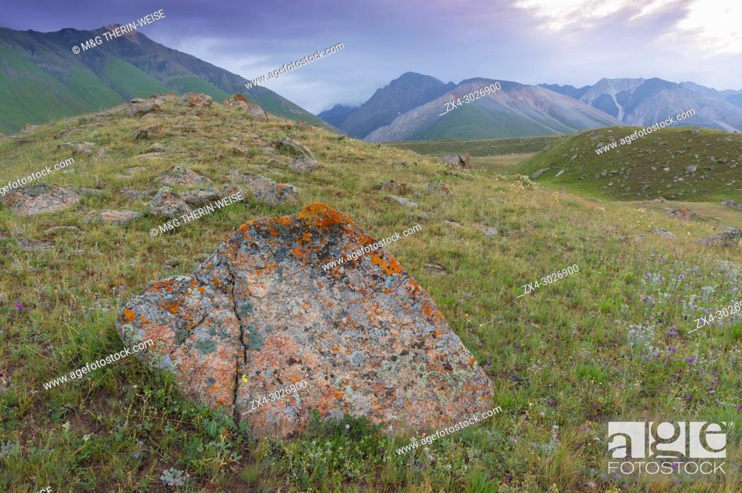 Stock Photo: Rocks and Lichens, Naryn gorge, River, Naryn Region, Kyrgyzstan.