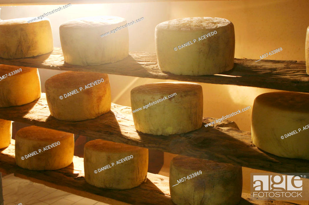Stock Photo: Cheese drying.