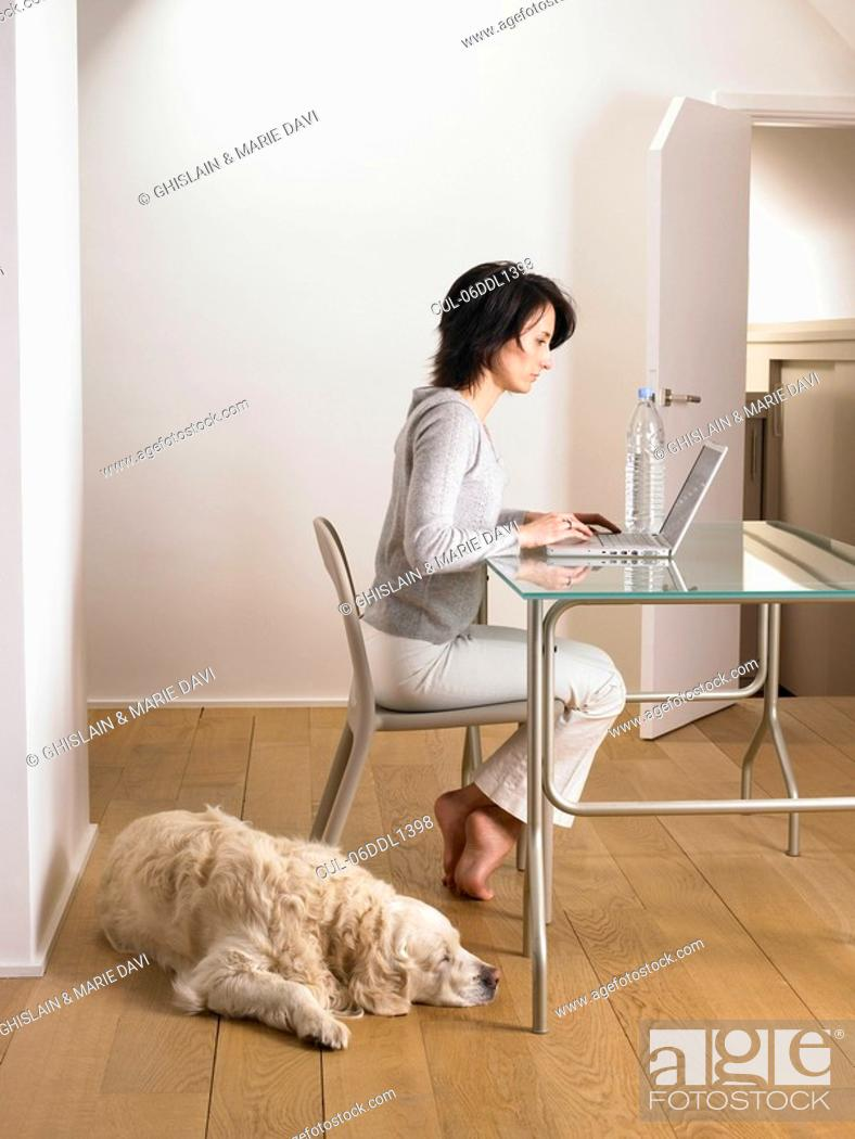 Stock Photo: Woman at her desk, dog sleeping.