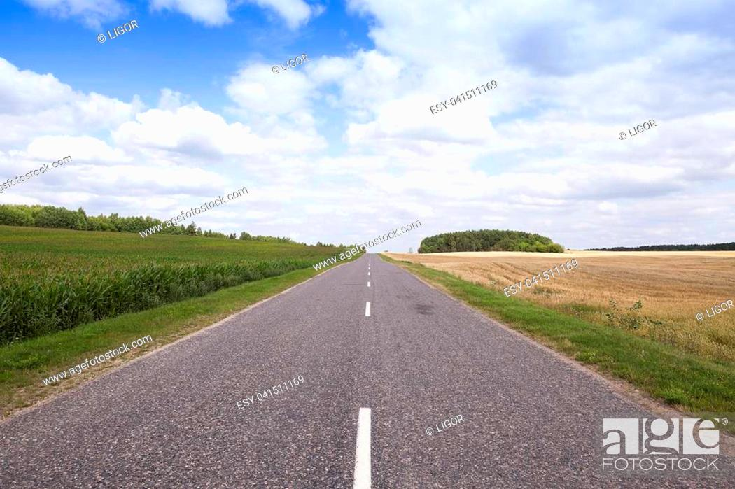 Imagen: photographed asphalt summer road in the countryside.