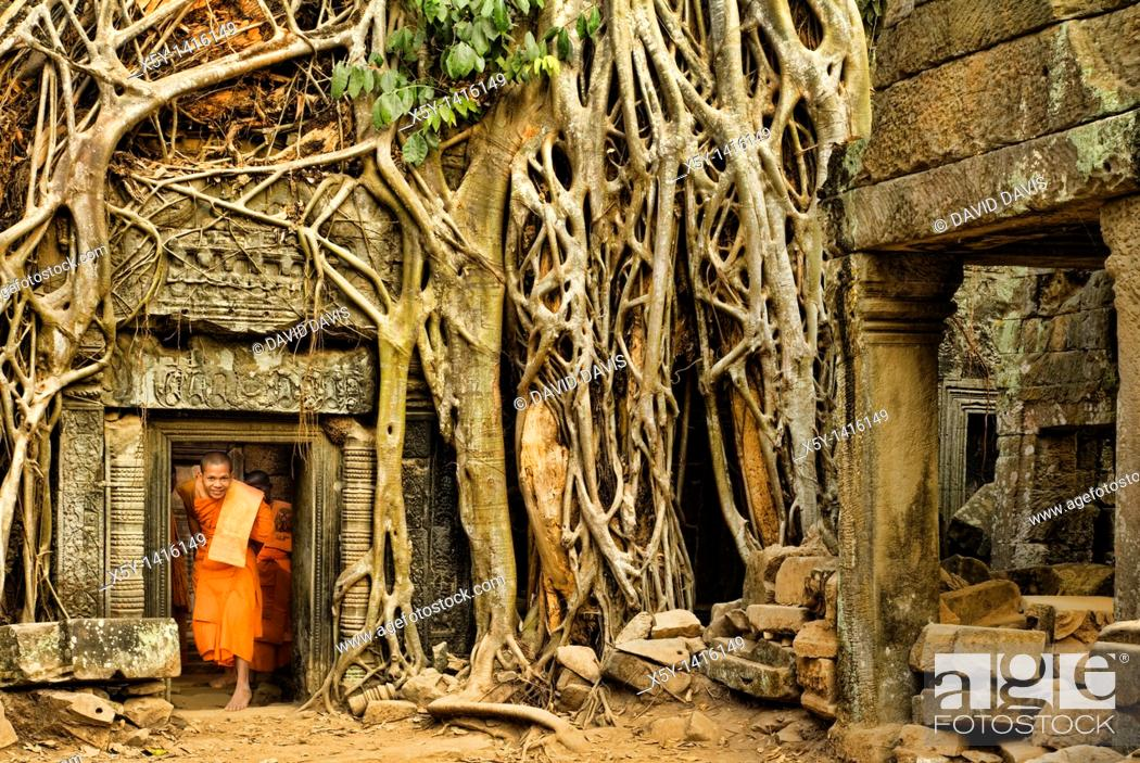 Stock Photo: Ficus Strangulosa tree growing over a doorway in the ancient ruins of Ta Prohm at the Angkor Wat site in Cambodia.