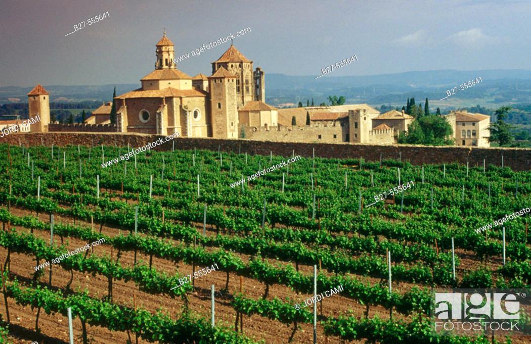 Stock Photo: Monastery of Santa Maria de Poblet( 12th century). Tarragona, Catalonia, Spain.