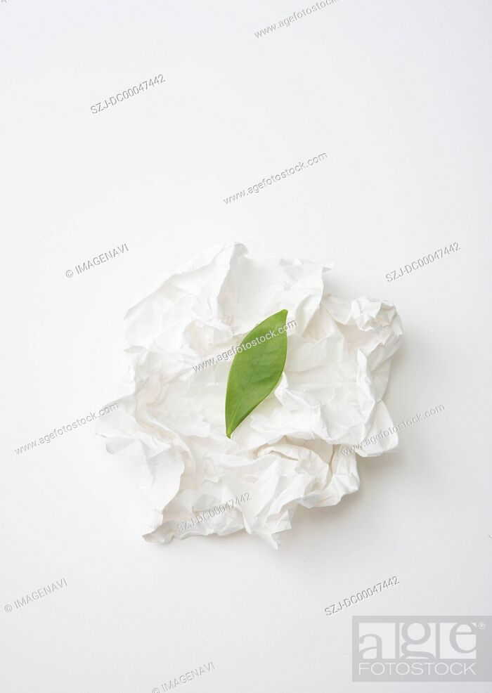Stock Photo: Screwed up paper and leaf.