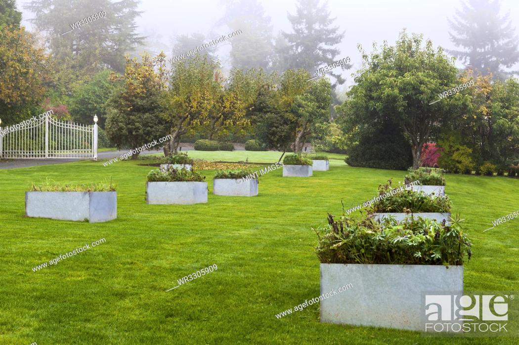 Stock Photo: Raised beds in landscaped garden.